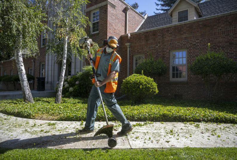 University of the Pacific employee Dillon Krieger uses an edger to trim the lawn on the Stockton Campus on Tuesday, July 14, 2020.